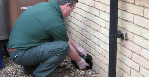 RSPH Level 2 Award in the Safe Use of Rodenticides in Suffolk